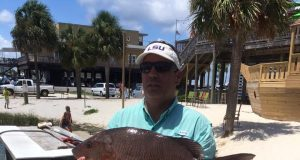 Pensacola fishing everything fishing in pensacola florida for Pensacola fishing forecast