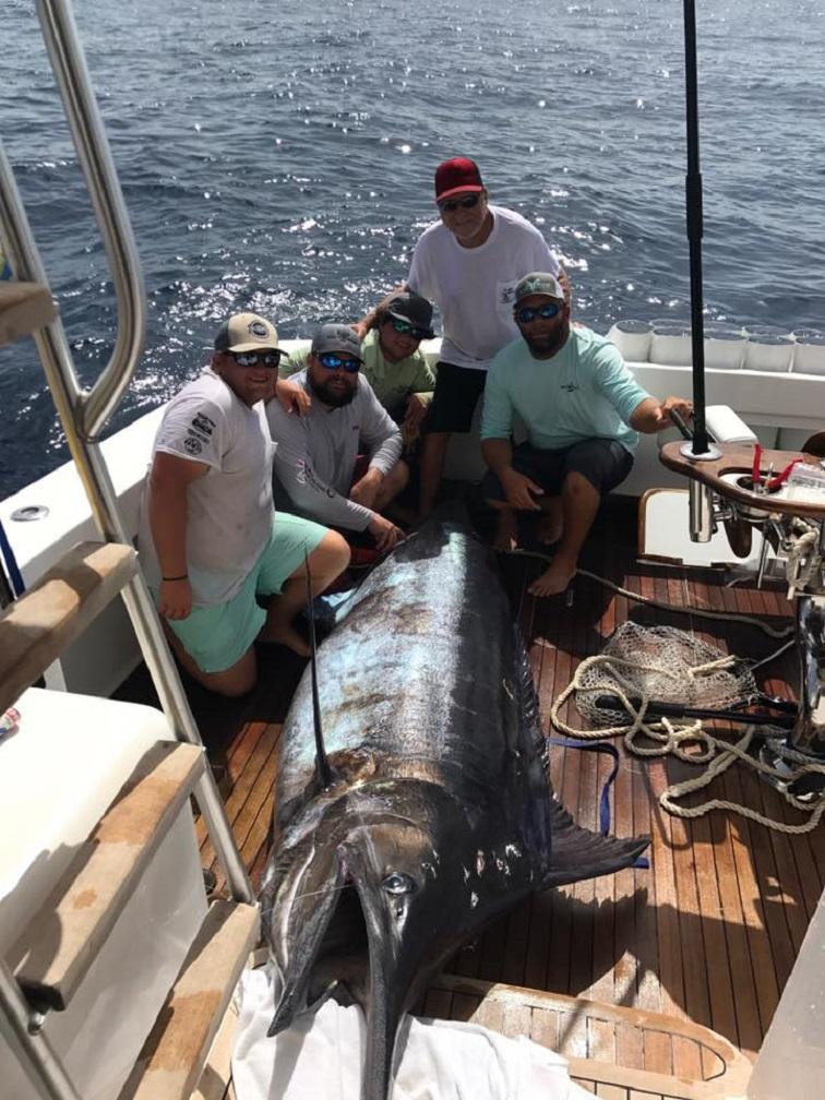 Pensacola fishing report 7 12 17 pensacola fishing for Pensacola fishing forecast