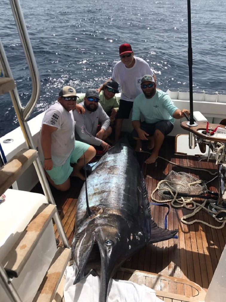 Pensacola Fishing Report 7/12/17